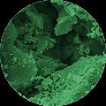 carbon_activo_s03